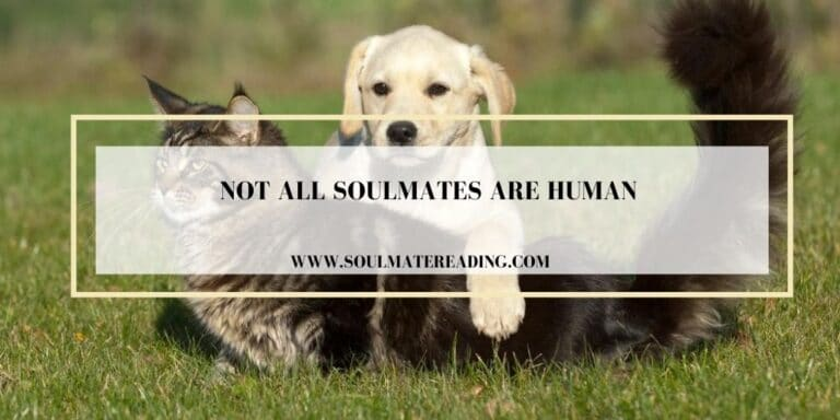 Not All Soulmates are Human